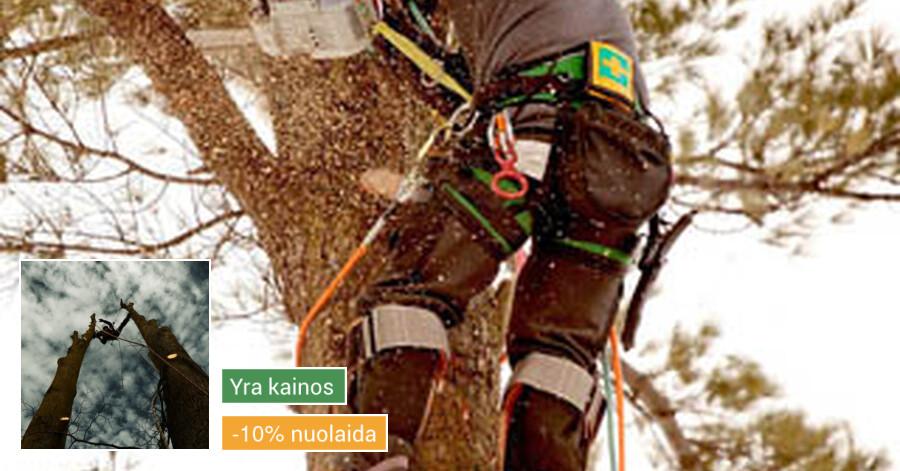 Pavojingų medžių pjovimas, medžių pjovimas, kelmų frezavimas