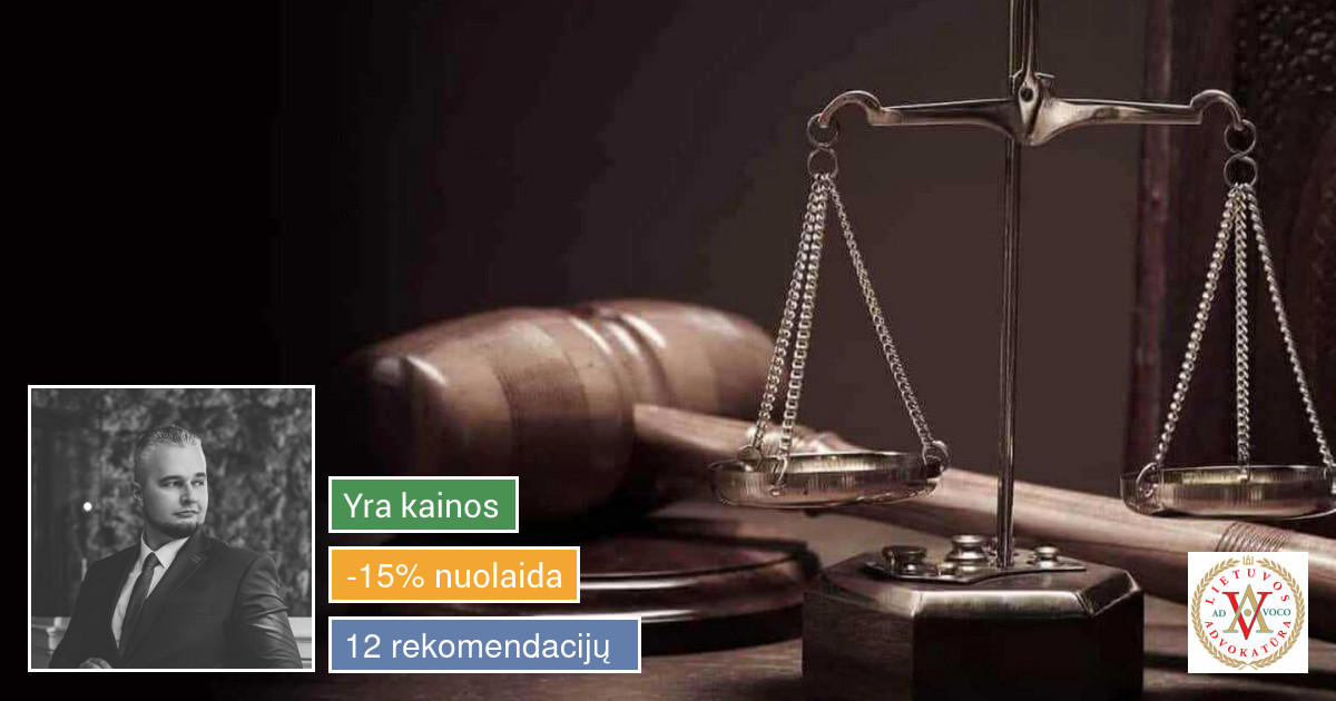 Profesionalios teisinės paslaugos (Lawyer / Юрист)