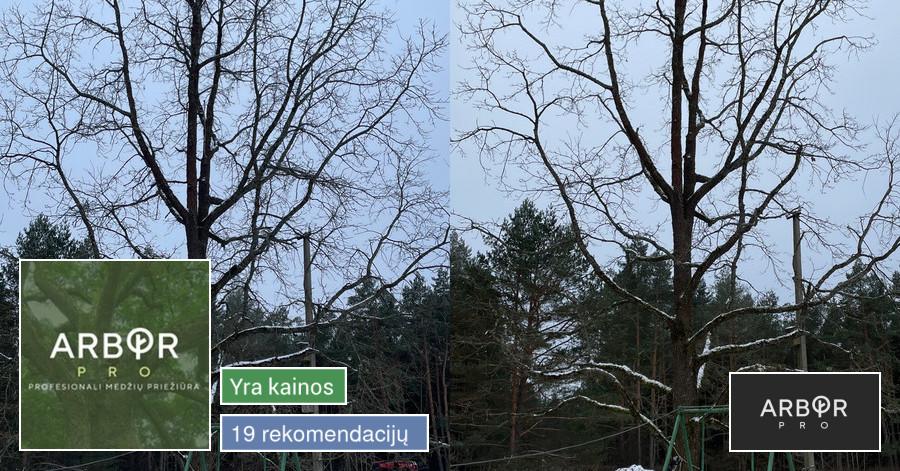 Arborpro - Profesionali Medžių priežiūra