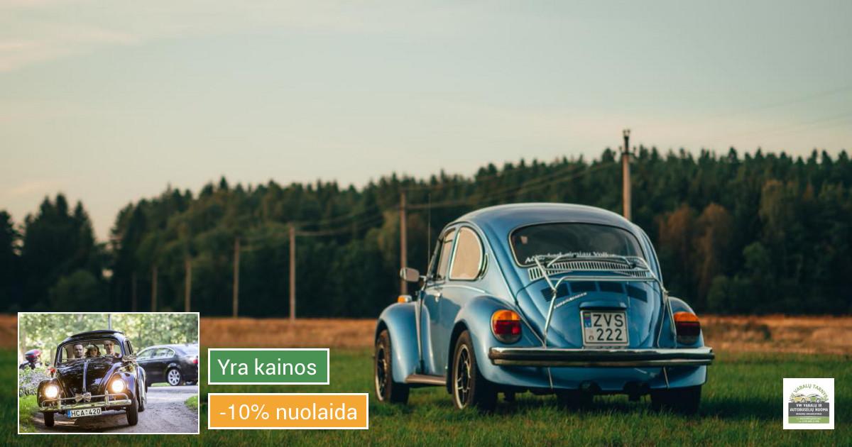 Senovinų automobilių nuoma