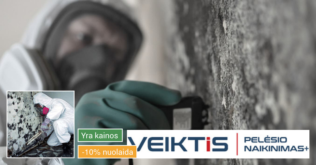Pelėsio/grybo naikinimas visoje Lietuvoje
