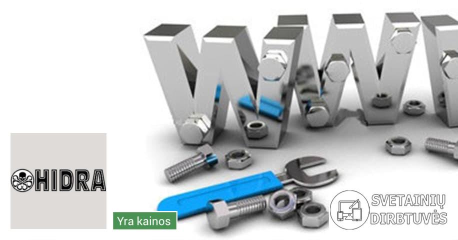 Interneto svetainių ir internetinių parduotuvių kūrimas