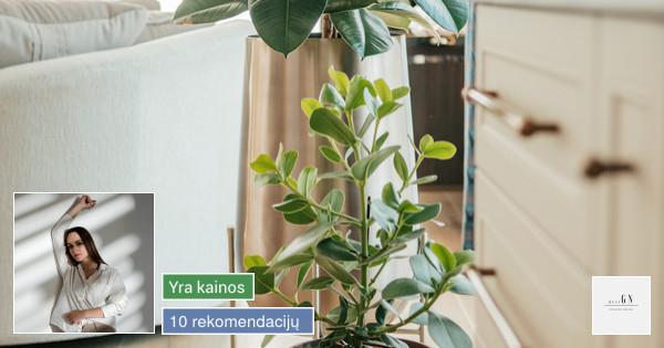 GN Interior Design
