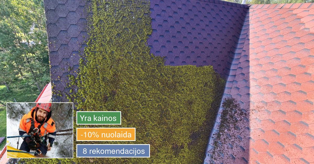 Aukštalipio paslaugos visoje Lietuvoje