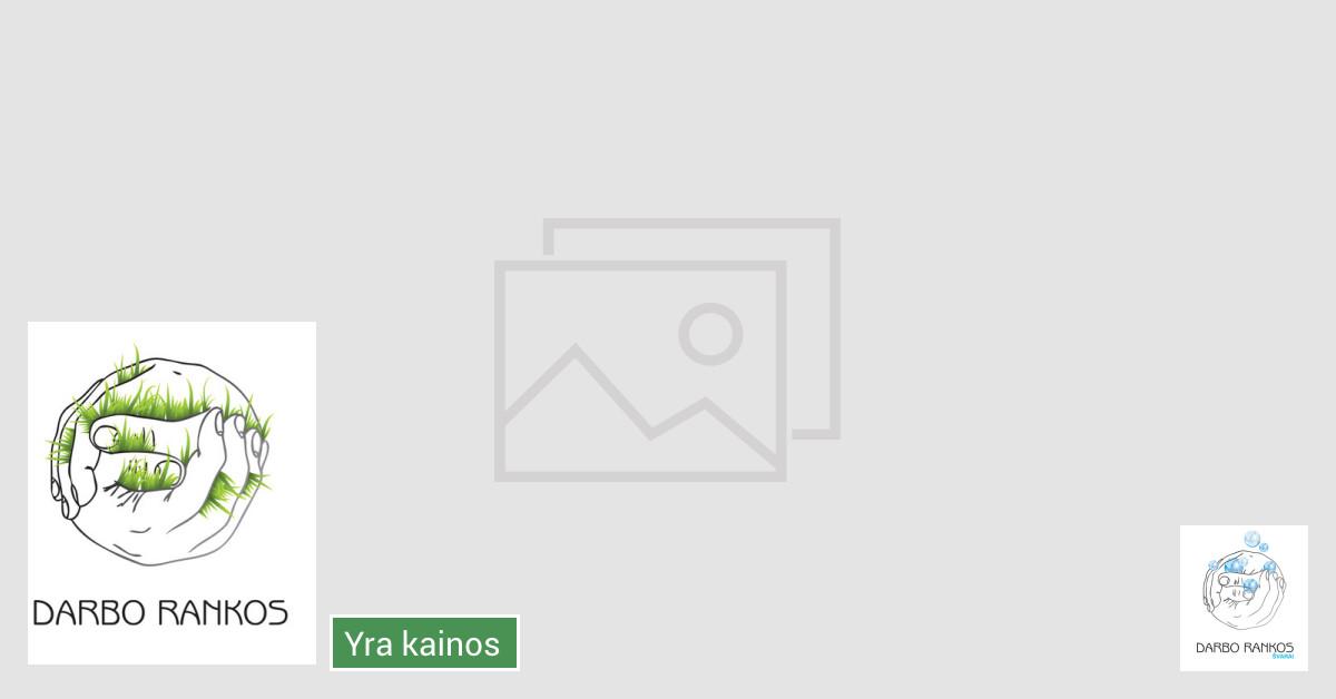 Bendrijų Teritorijos tvarkymas Panevėžio mieste